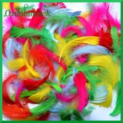 Piórka kolorowe - żółto/niebiesko/różowo/zielone 10g