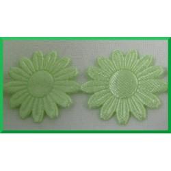 Aplikacje słoneczniki duże jasno zielone