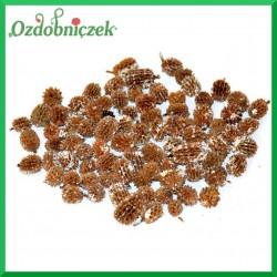 Susz CASURINA szyszeczki bielone 65 gr  420688