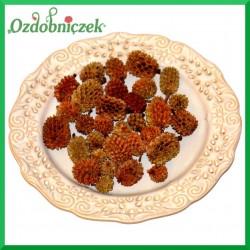 Susz CASURINA szyszeczki naturalne 65 gr  420687