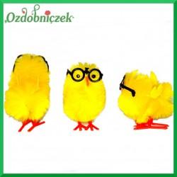 Kurczaczk ozdobny w okularach 1szt.