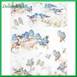 Papier ryżowy A4 - ptaszki niebieskie R654