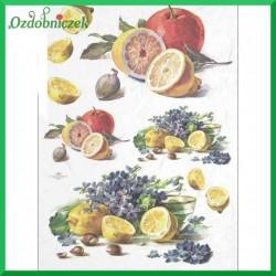 Papier ryżowy A4 - owoce R396
