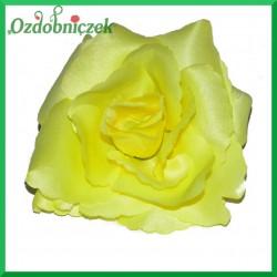 RÓŻA głowka kwiatowa 10,5 ŻÓŁTA