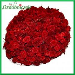 Szyszki CASURINA czerwone 500g