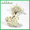 Dzika róża oszroniona biała podwójna gałązka 40 owoców