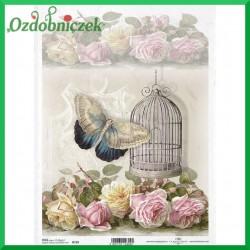 Papier ryżowy A4 R0759 - motyl klatka róże