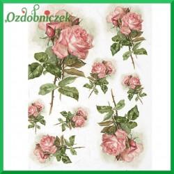Papier ryżowy A4 R1202 - róże gałązka
