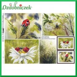 Papier do decoupage KLASYCZNY A4 D0500M - kwiaty biedronki