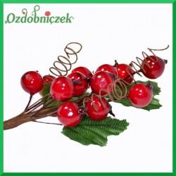 Róża dzika na gałązce (owoce, sprężynki, listki) 15cm