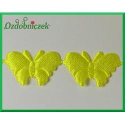 Aplikacje motylki cytrynowe