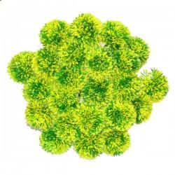 ŻÓŁTY kwiat cebuli 40cm