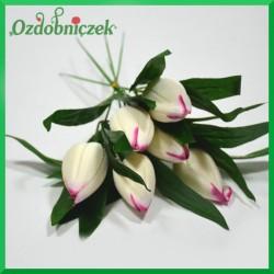 BUKIET TULIPANÓW śmietana z amarantem 6szt.