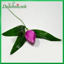 Kwiat TULIPANA amarant 24cm/1szt.