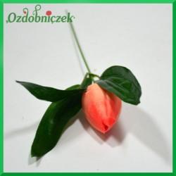 Kwiat TULIPANA brzoskwinia 24cm/1szt.