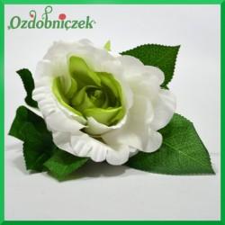 RÓŻA NA KRÓTKIEJ ŁODYDZE - biało- zielona