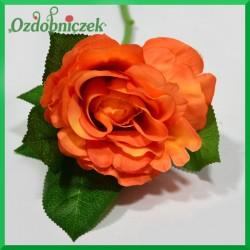 RÓŻA NA KRÓTKIEJ ŁODYDZE -pomarańcz