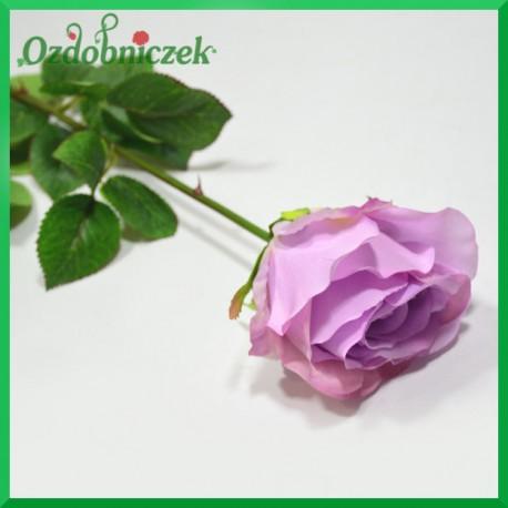RÓŻA na długiej łodydze - jasny fiolet