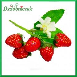 TRUSKAWKI na druciku 5 owoców