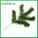 Gałązka SOSNY zielona 42cm (5 rozgałęzień)