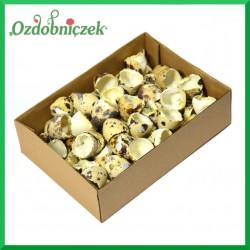 Skorupki jajek przepiórczych - połówki jajek pudełko 72szt.