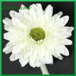 Gerber mini - kwiat biały