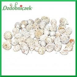 Szyszki CASURINA bielone 500g