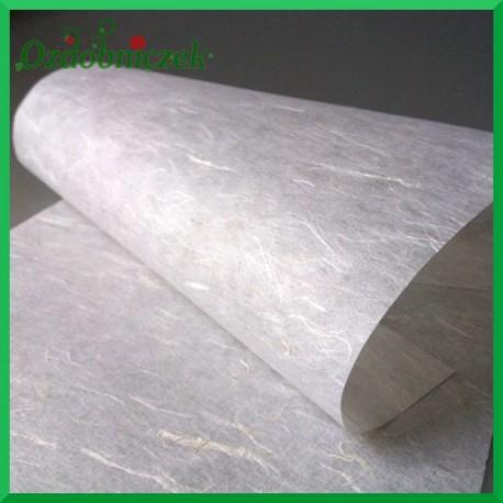 Papier ryżowy bez nadruku - RC2