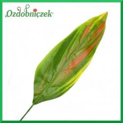 Kolorowy liść HOSTY duży 70cm