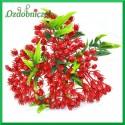 Czerwono-zielona gałązka ozdobna z listkami 32cm bukiet 10szt.