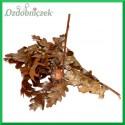 Gałązka naturalna Dębowa liście dębu dębina 30g