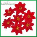 Poinsecja welwetowa główka kwiatowa 5szt środek brokatowy