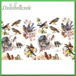 Papier do decoupage KLASYCZNY A4 - A4 D0389 - ptaszki, budka dla ptaków, sikorki