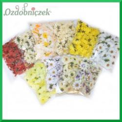 ZESTAW - mix kwiatuszki materiałowe 10 opakowań 600szt.