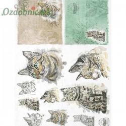 Papier ryżowy A4 - R1565 koty