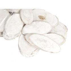 Plastry brzozy owalne duże bielone 10-12cm 20szt.