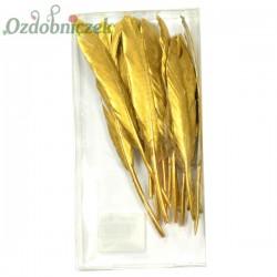 Piórka długie ZŁOTE metalizowane 12cm/16szt. PUDEŁKO