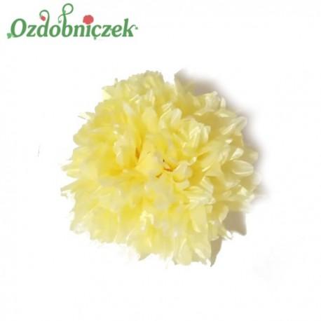 Chryzantema satynowa żółta - duża główka kwiatowa 16cm/1szt.