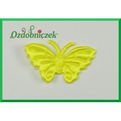 Aplikacje motylki cytrynowe 5szt