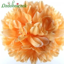 Chryzantema satynowa herbaciana - główka kwiatowa 14cm