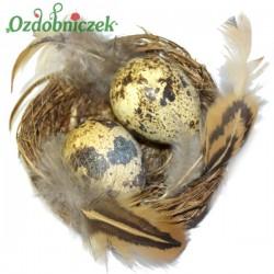 Gniazdko z jajeczkami przepiórczymi i z piórkami