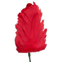 Główka tulipana strzępiastego CZERWONA SZT/8,5 CM