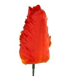 Główka tulipana strzępiastego POMARAŃCZOWO-ŻÓŁTA SZT/8,5 CM