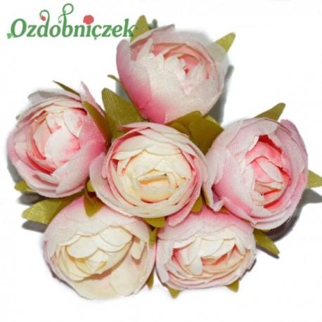 PEŁNIK róża bukiecik pudrowa RÓŻOWA 6szt