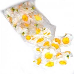 ŻONKILE BIAŁO-ŻÓŁTE - zestaw kwiatuszków ok.60szt.