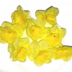 ŻONKILE ŻÓŁTE - zestaw kwiatuszków ok.60szt.