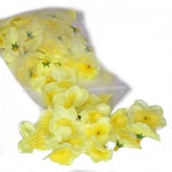ŻONKILE CYTRYNOWE - zestaw kwiatuszków ok.60szt.