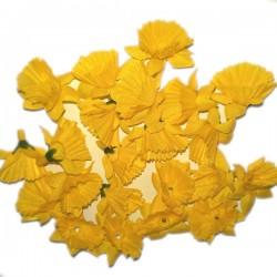 ŻONKILE MAŁE ŻÓŁTE - zestaw kwiatuszków ok.60szt.