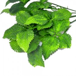 Liście zielone karbowane 10szt