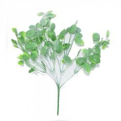 Dolarowiec, liście dekoracyjne, zielone - 5szt/38cm